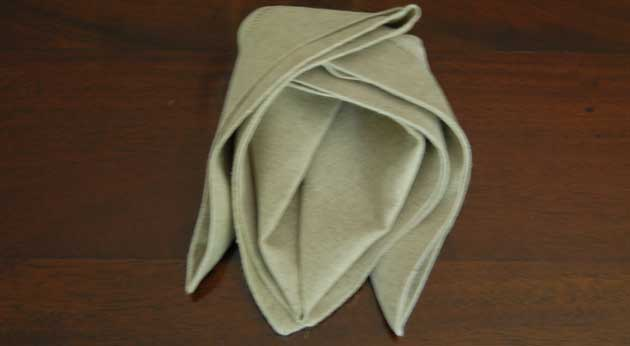 How to Fold Napkin Example 5