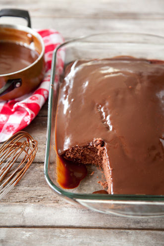 Savannah Chocolate Cake with Hot Fudge Sauce Thumbnail